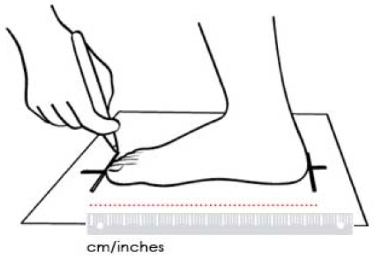 Shoe Size Chart – Women